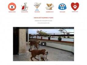 הבית של יו יו פנסיון לכלבים ברעננה